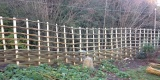 Continuous Weave Willow Fencing With Trellis